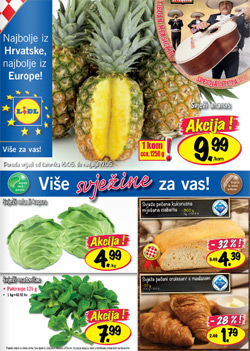 Lidl katalog do 22.5.