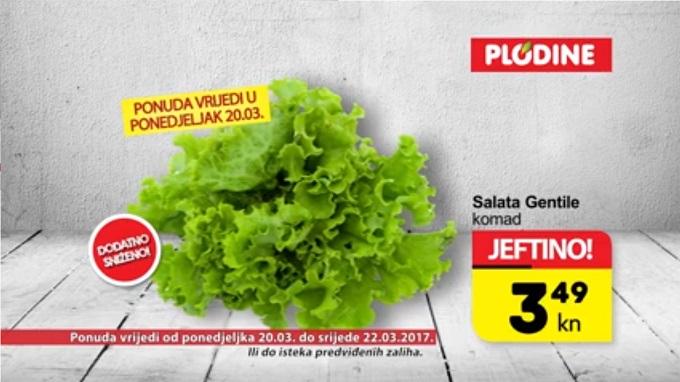 Plodine akcija salata