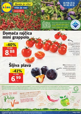 Lidl katalog tržnica do 9.10.